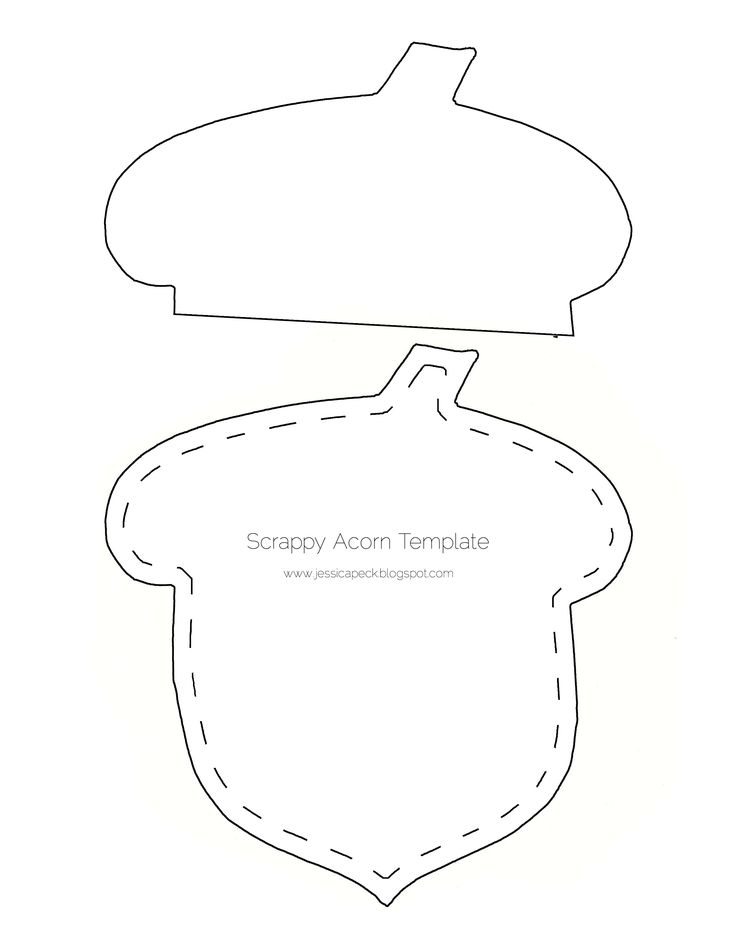 acorn template