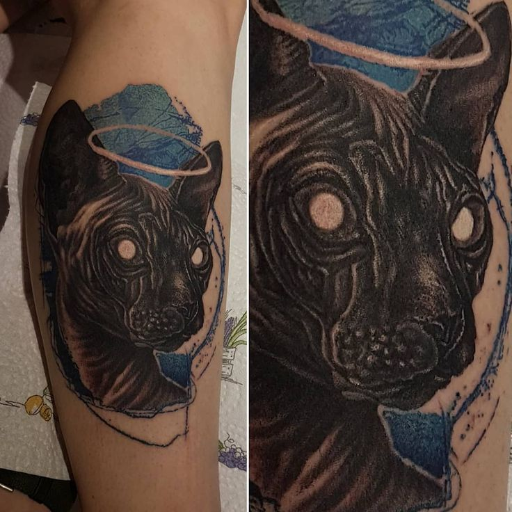 "65 Likes, 4 Comments - Stefan Marcu Art (@stefanmarcuart) on Instagram: ""Sphinx Cat on a lovely client _________________-- made with the help of #inkjectanano #darklabrpg…"""