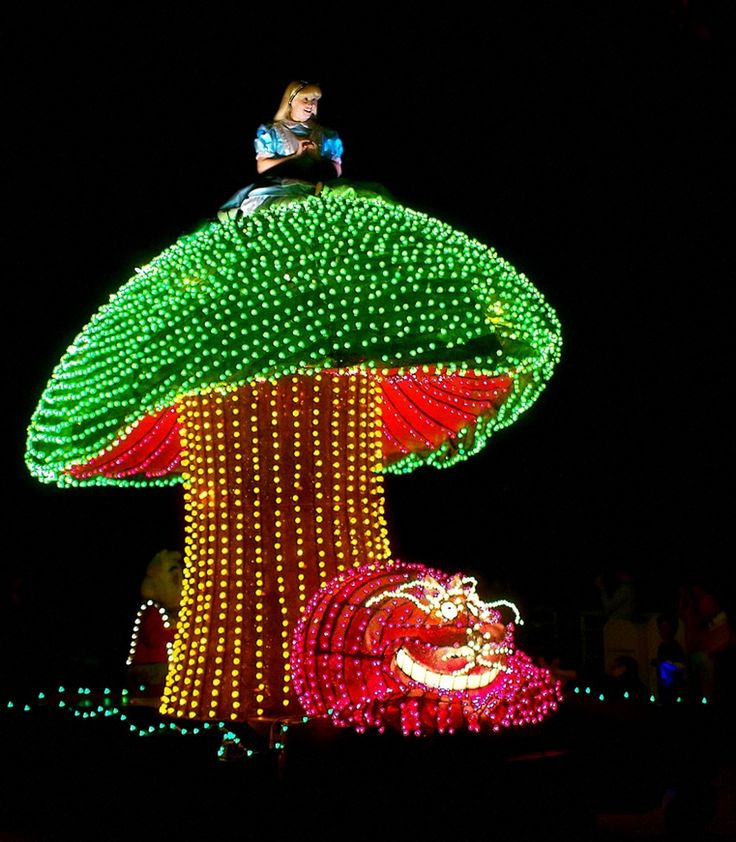 Disney Electric Parade, It was really bright when i saw but amazing at the same time! <3