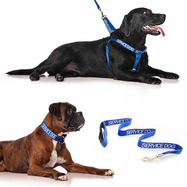 10% off L/XL combo sets plus FREE SHIPPING within Australia. Model: Boxer Dog & Labrador