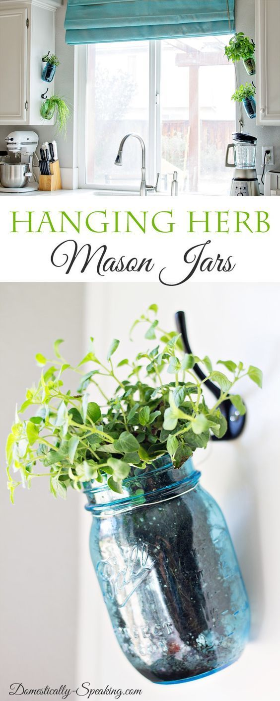 best 25+ hanging herb gardens ideas on pinterest | hanging herbs