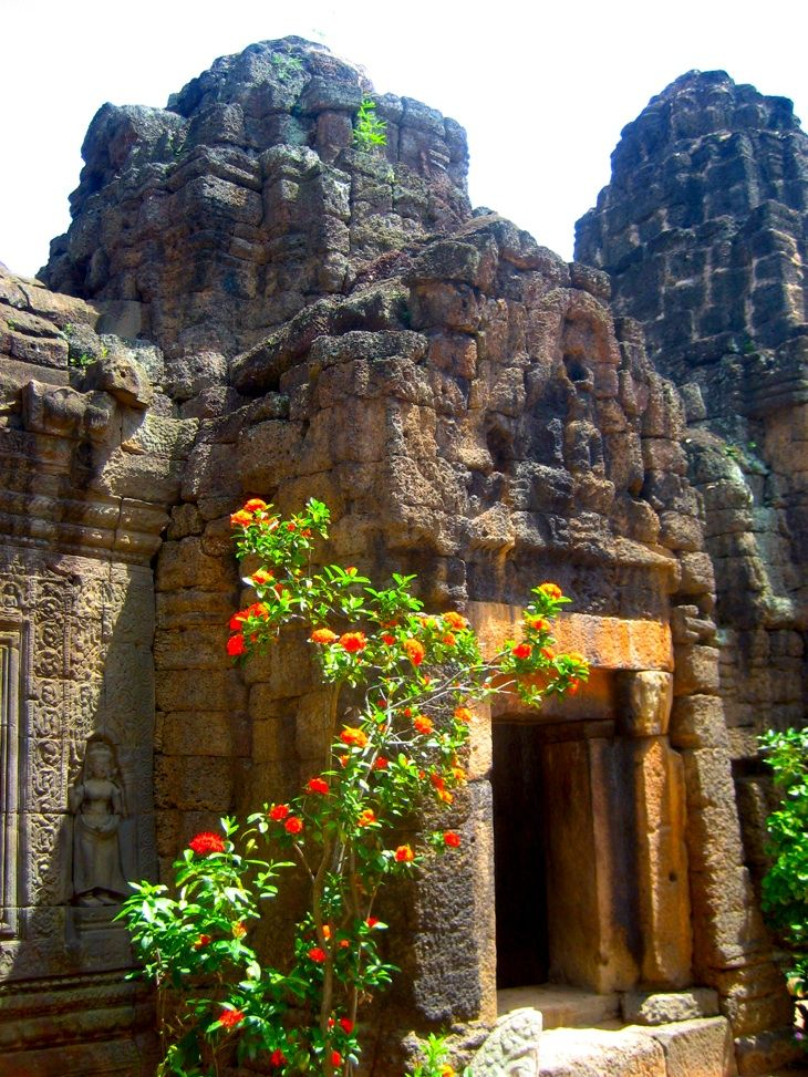 Ta Prohm, Cambodia - Things to do in Phnom Penh