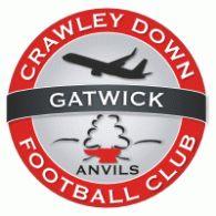 Logo of Crawley Down Gatwick FC
