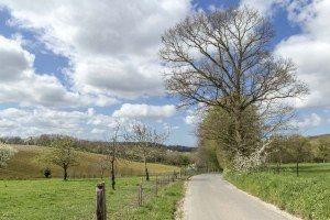 En partant d'Eurville... (Val de Saâne