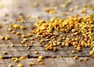 BeBio: superfood bijenpollen