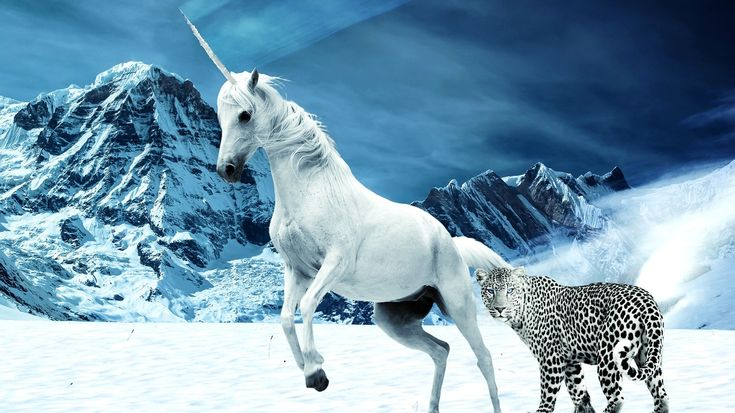 Unicorn Accounting Outsourcing