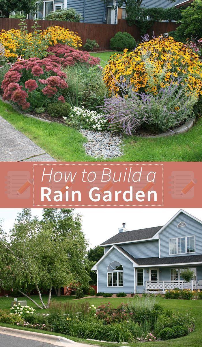 best 25 rain garden ideas on pinterest rocks garden rock