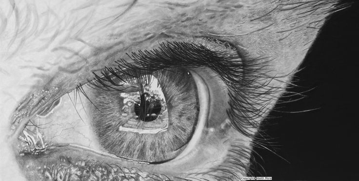 Reflectiveness. Keith More hyperrealistic pencil drawing A4-A3 size.