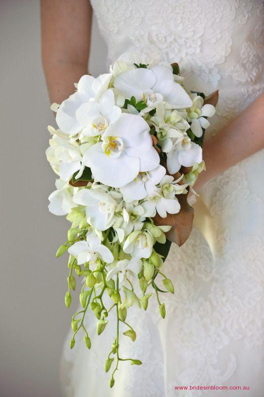 BG128 Teardrop bouquet featuring Phaeleonopsis orchids, singapore orchids and little gem magnolia.