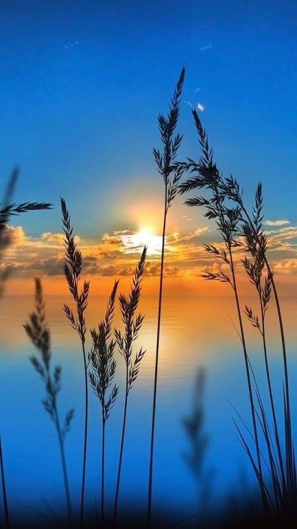 Sonne beim Aufgehen Sieht sehr schön für mich au…