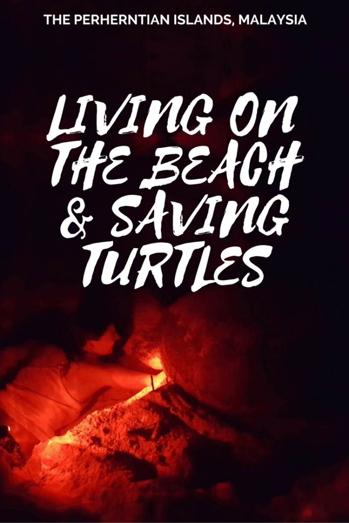 Living on a beach, saving turtles in Malaysia