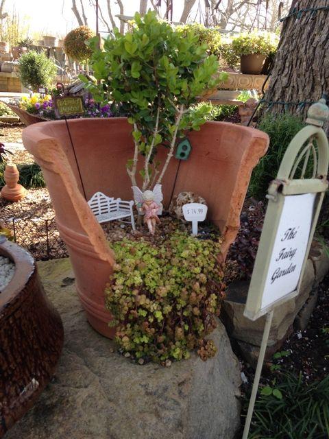 Actividades con ni os jardines en miniatura plantas y for Jardines en miniatura