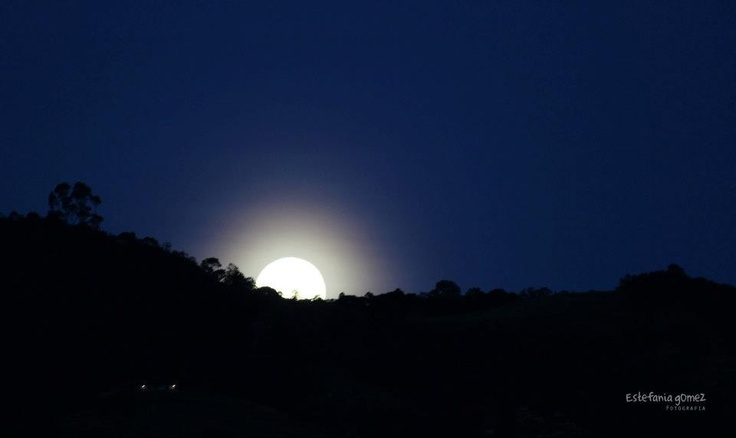 Luna lunita lunera