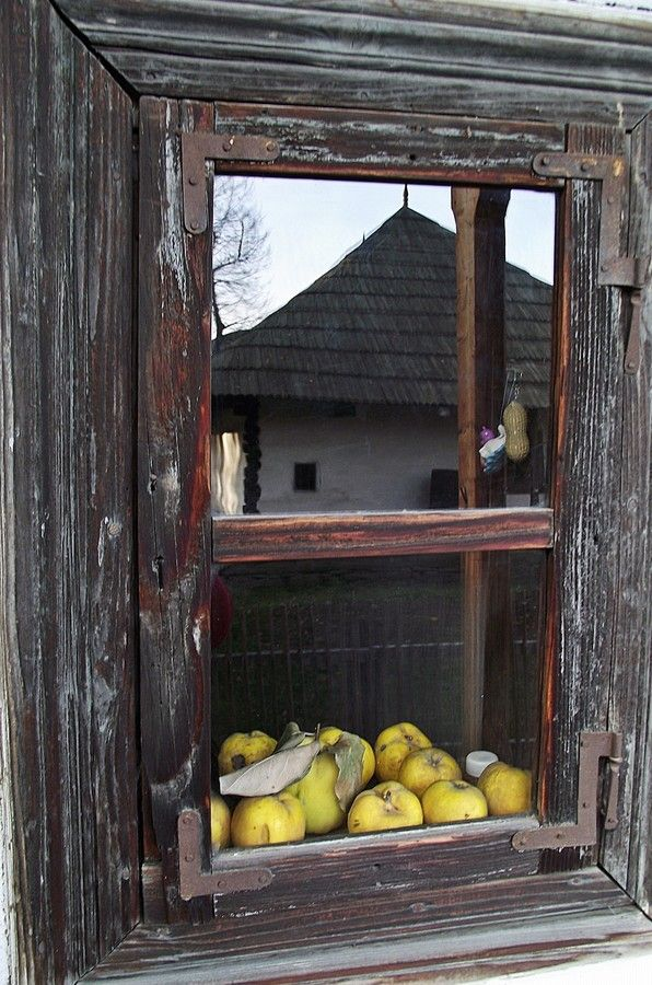 Quince window by Nancy Vajaianu on 500px