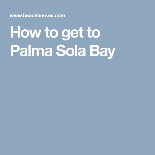 How to get to Palma Sola Bay