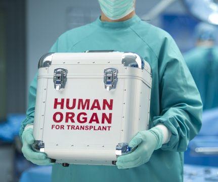 Global Transplantation Market 2018 – AbbVie Inc, Arthrex Inc, Zimmer Biomet, Medtronic, Novartis AG, Stryker