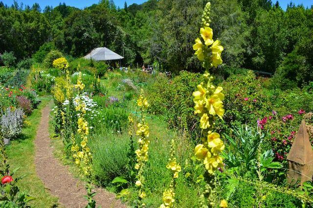 OAEC garden