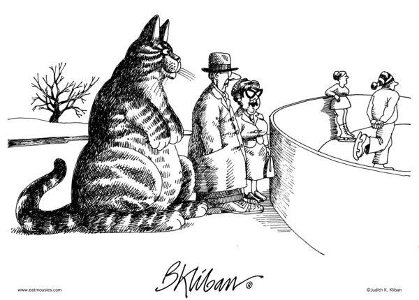 Klibans Cats Comic Strip December 20 2016 On GoComics