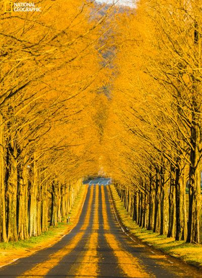 Favorite Photos From National Geographic Photo Contest 2014 — Beautiful Nature Photography - Redbook