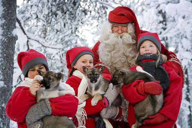 Santa and elfs with puppies