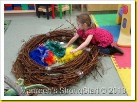 jan 17 030-grape vine wreath and boas for nest