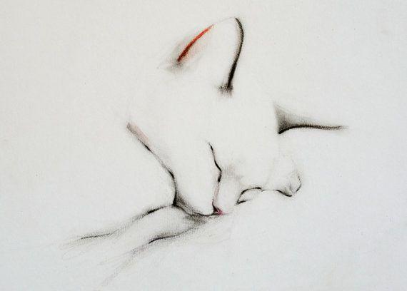Set of 8 Sleeping Cat Greeting Cards by Kellas Campbell on Etsy