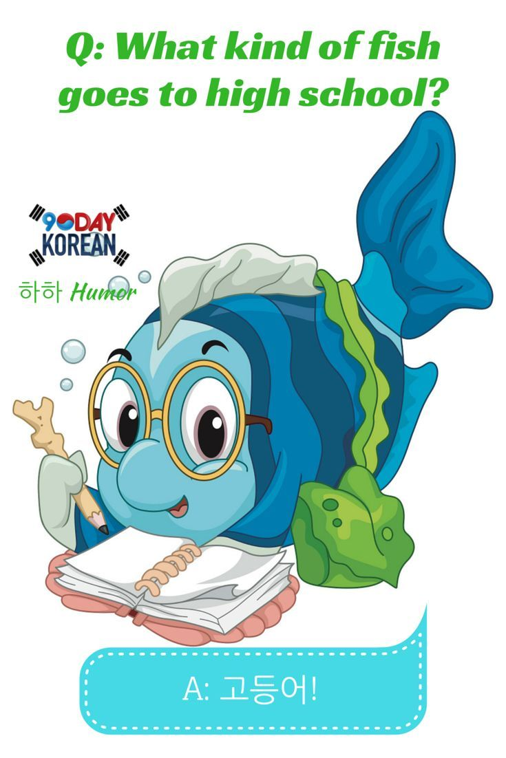 155 best haha humor korean jokes images on pinterest for Best time to fish today