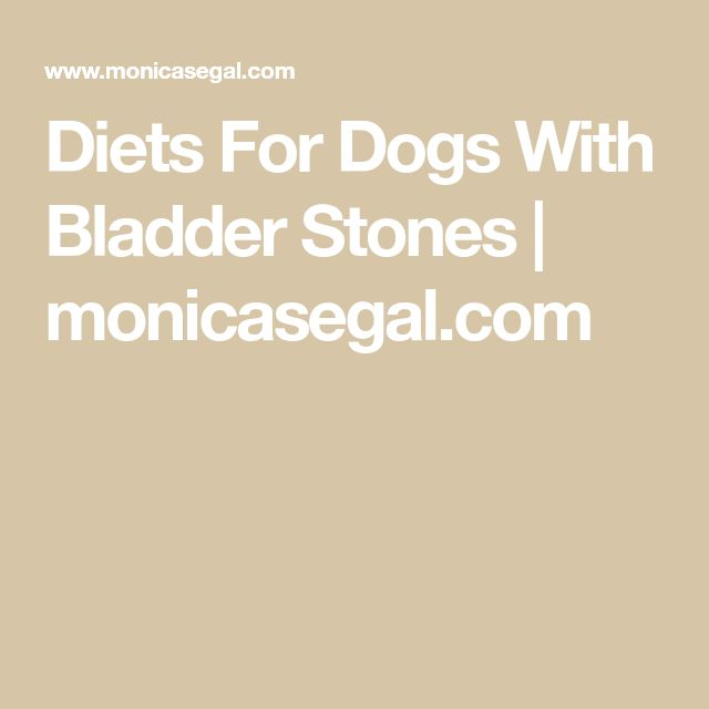 Diets For Dogs With Bladder Stones Dog Food Recipes Dog