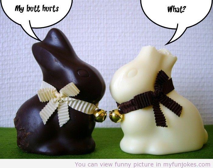 Easter Joke funny foto  - http://www.myfunjokes.com/other-funny/easter-joke-funny-foto/  #funnyimages  #animal  #dog  #haha  #cute