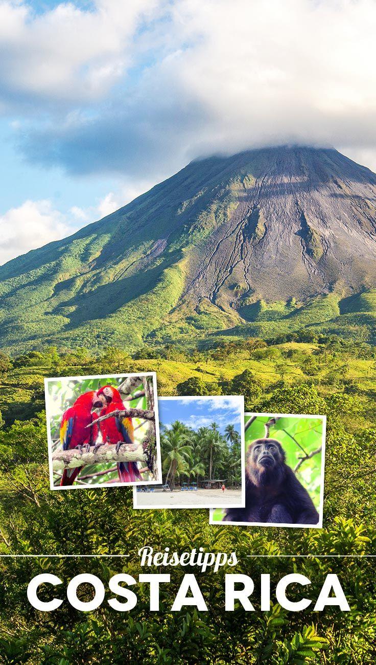 Abenteuer Costa Rica: 8 großartige Reisetipps und Highlights für deine Costa Rica Rundreise