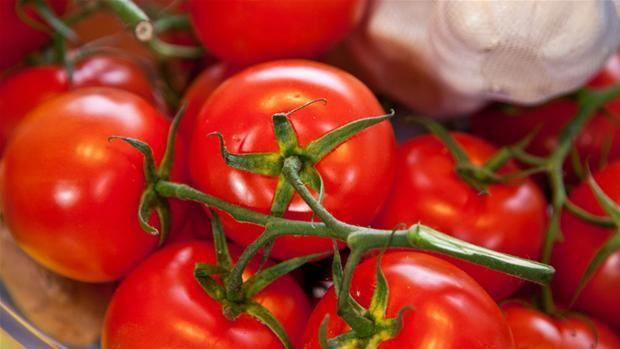 Tomater og hvidløg
