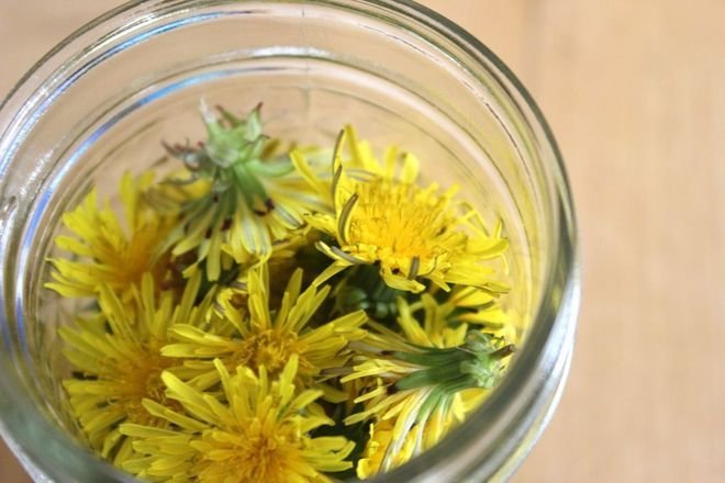 Kitchen Witchery: Dandelion Salve: Diy Dandelions, Salve Recipe, Seeds Farms, Olive Oils, Dandelions Farms, Infused Oils, Dandelions Salve, Things To Do, Kitchens Witchery