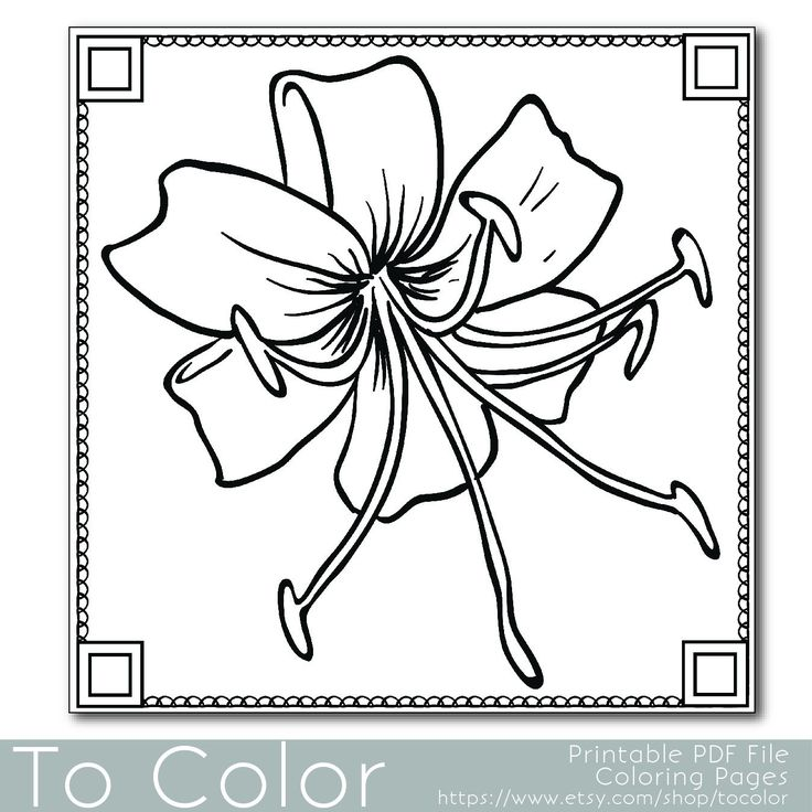 Flower Coloring Page For Adults PDF JPG Instant Download Book