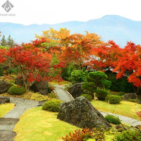 箱根の山々を借景に