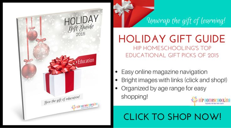 Fun Christmas Gift Guide for those with kids, homeschoolers, parents, grandparents.  #HHholidaygiftguide