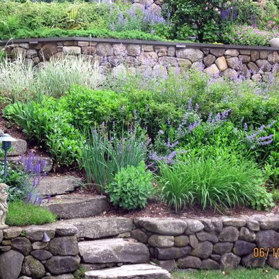 Natural stone steps and terraces; natural plantings - houzz.com