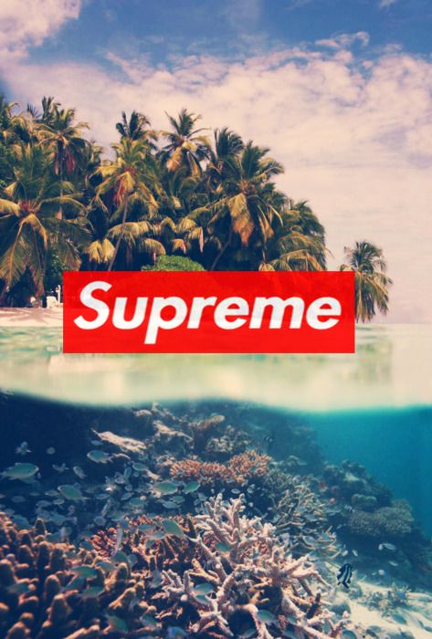 Supreme x tropical supreme travel beach adventure - Hd supreme iphone wallpaper ...