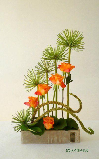 Roses oranges et agapanthes pour une composition graphique