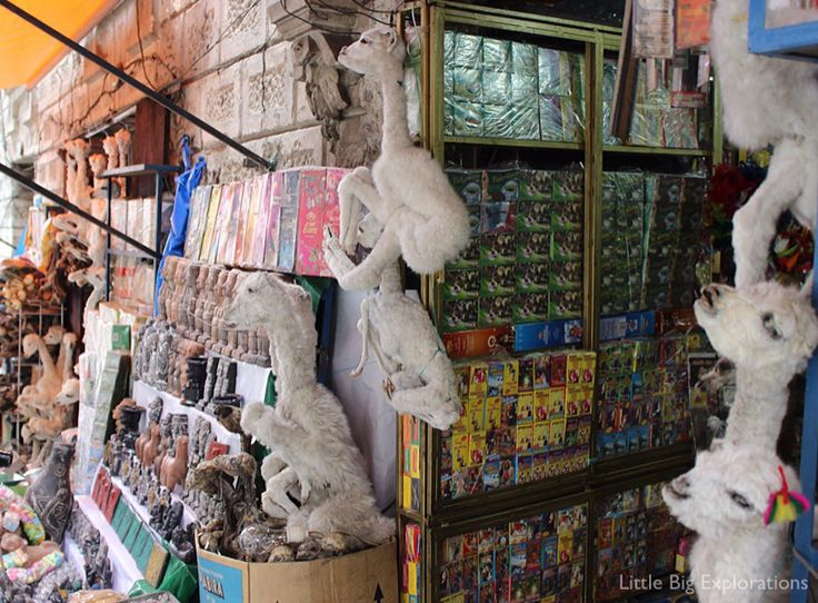 Witches market in La Paz, Bolivia. Dead lamas are supposed to bring good fortune on a newly built house.