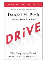 Image result for dan pink's motivation theory