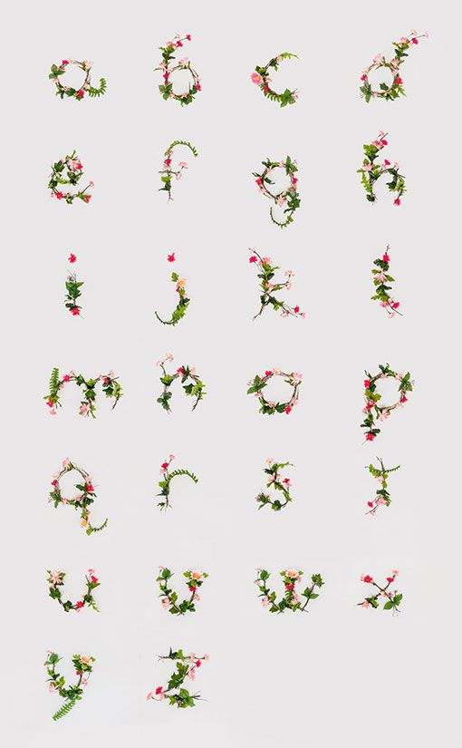 Anne Lee: Floral Typography