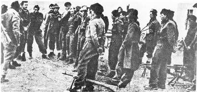 Divisione Nannetti Garibaldi