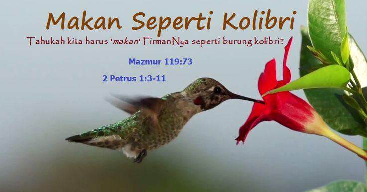 Burung Kolibri mempunyai metabolisme yang luar biasa, mari lihat makna apa yang bisa kita ambil dari perumpamaan burung Kolibri ini dengan kehidupan rohani kita. > ( https://youtu.be/tMqpLxx0-uw  ) #AmazingFacts #Humming #Bird #Kolibri #FirmanNya #Kebenaran #Tersembunyi #Makan #Akhir #Zaman #Jaman #Tuhan