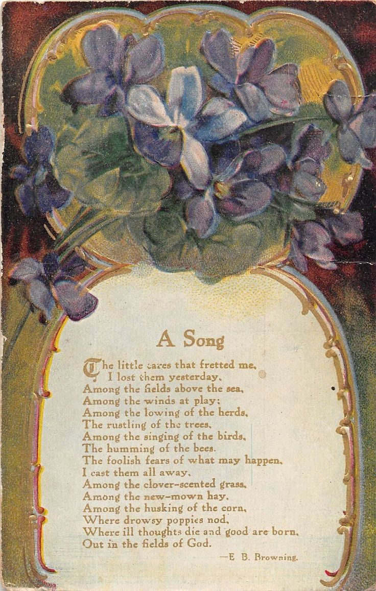 Gorgeous Glossy Violets With Poem A Song by Elizabeth Barrett Browning-1910 PC | eBay