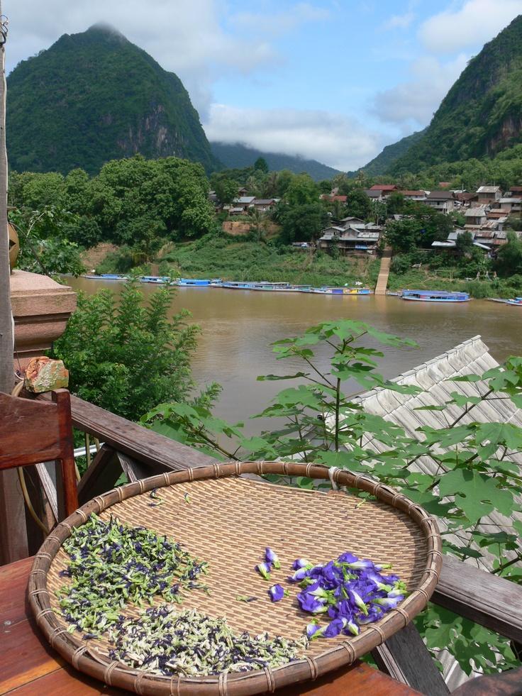 Nong Kiau, northern Laos