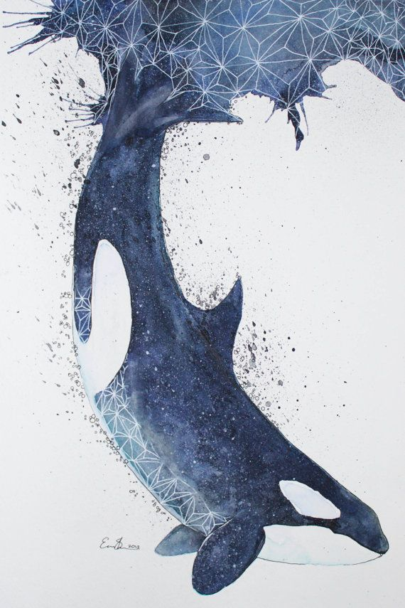 Aquarelle originale - Orca
