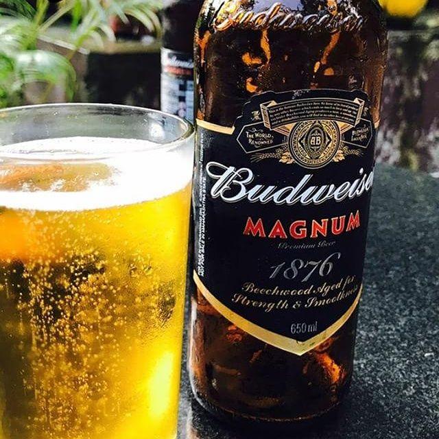 #budweiser magnum: The king of beers. #beer #beergeek ...