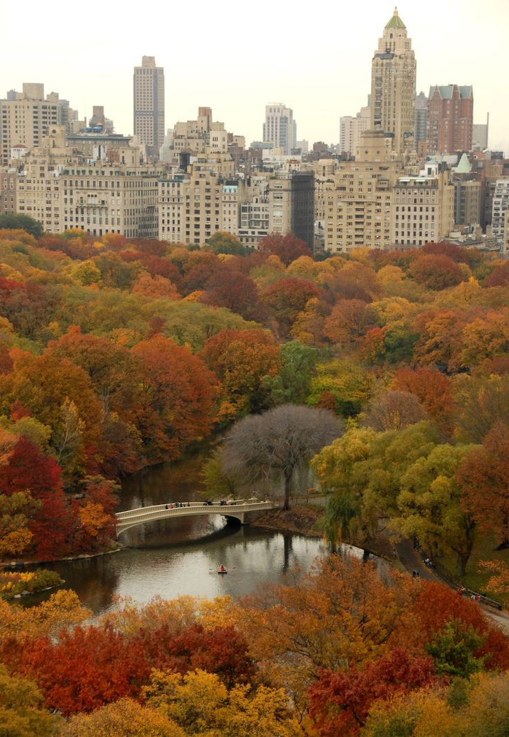 NYC Central Park in autumn looking East