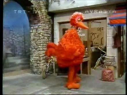 Bizim Susam Sokağı'mızdaki Minik Kuş,Orijinalinden Farklı Olarak Turuncu Renkteydi...Neden Acaba :)