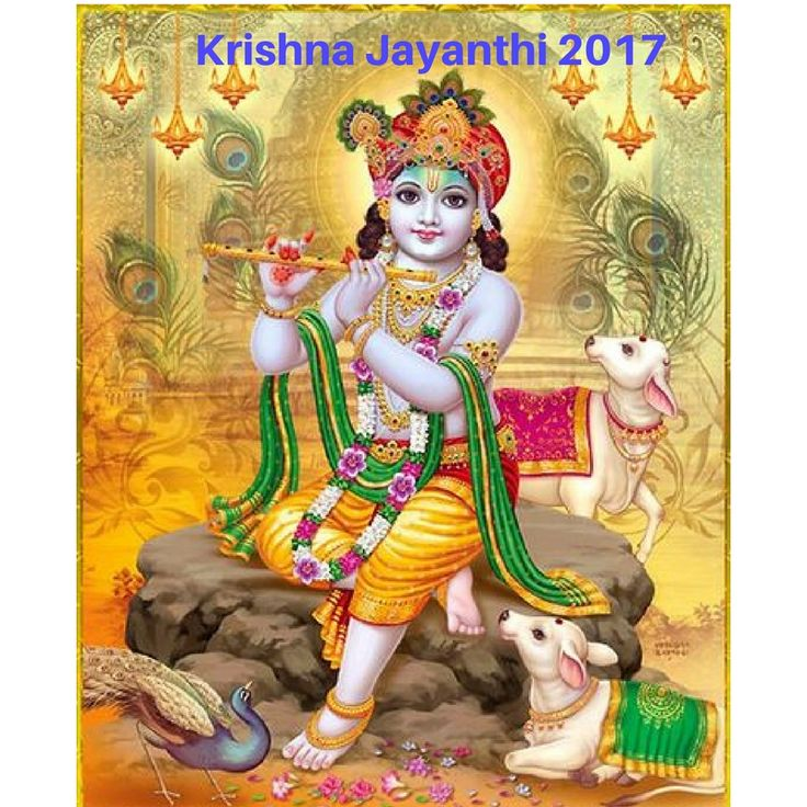 Lord Krishna is considered to be the Lord's most glorious incarnations. Even saying and remembering His name brings joy because Sri Krishna himself was a manifestation of joy at all levels and in all walks of life.On the day you can please Lord Krishna who will secure you for the duration of your life.     #Krishnajayanthi2017 #Krishnajayanthi #KrishnaJanmashtami2017 #KrishnaJanmashtami #Janmashtami